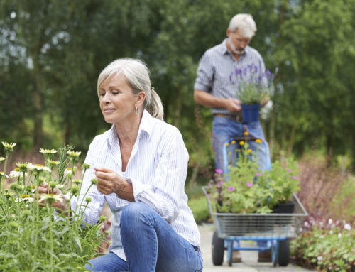 5 Simple Steps to Reduce Injuries While Gardening