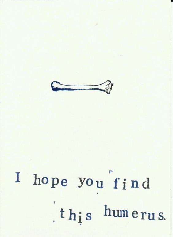 Tibia-honest-I'll-patella-when-1-find-something-femur-humerus