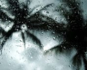 joint pain during rainy days