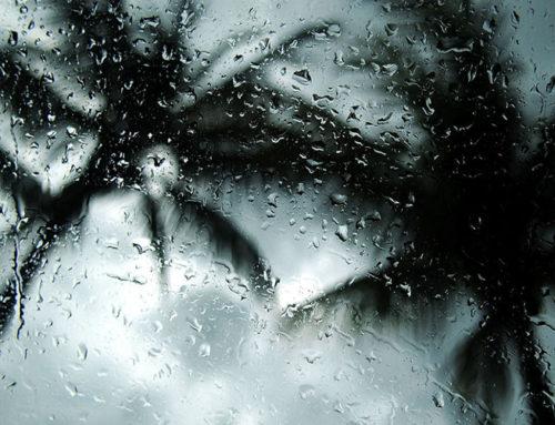 Does Rain Season Affect Joint Pain?